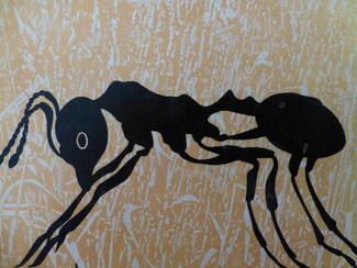 עכשיו בגיל 72 אני חשה  סוף סוף שייכת לקהילת הנמלים .