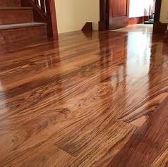 elite floors floor sanding glasgow edinburgh