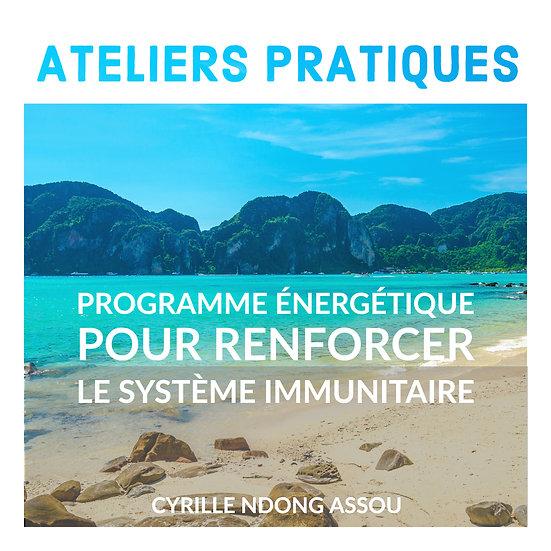 Atelier : Programme énergétique pour renforcer le système immunitaire