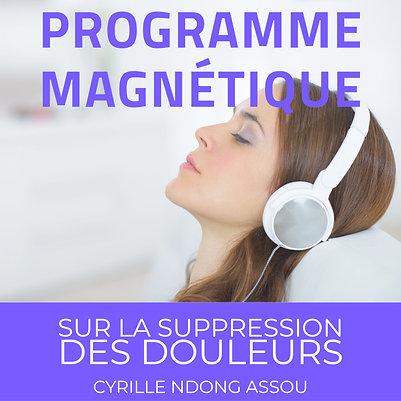 Programme magnétique sur la suppression des douleurs