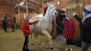 Projekt »PS Pferdestärken« in Bleichstetten: Pferde stärken Kinder