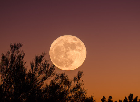 Supermoon Thursday - Magical Viewing That Don't Need Netflix