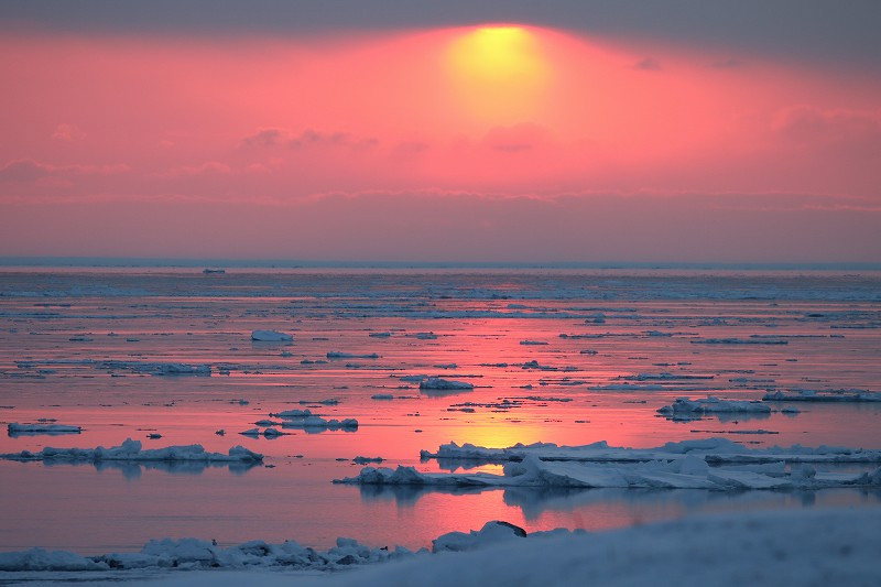 3 Mr. Kurosawa's work of taking pictures by himself. The photo shows the drift ice on the Sea of Okhotsk (Photo courtesy of Mr. Kurosawa)