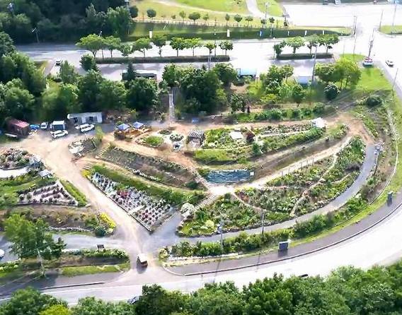 4 Overview of Rose Garden