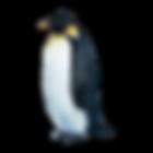 Acuarela Pingüino 1
