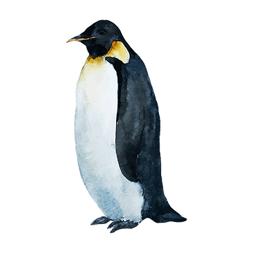 Watercolor Penguin 1