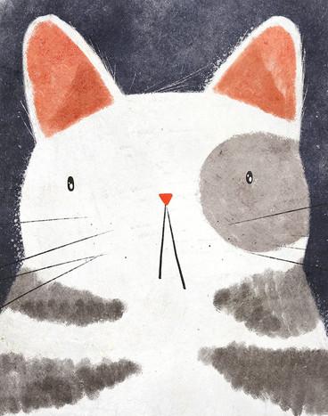 Illustrator's_Canvas k.jpg