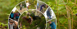 Photo Book: Huckleberry Picking