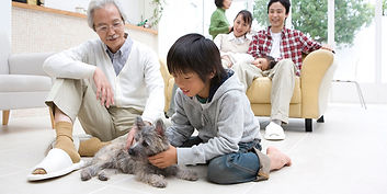 家族と子犬