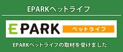 東京ドクターズの取材を受けました。