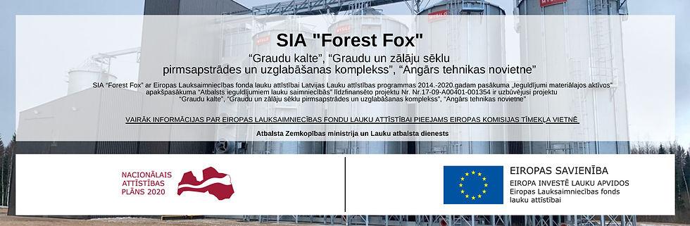 SIA _Forest Fox_ (1).jpg