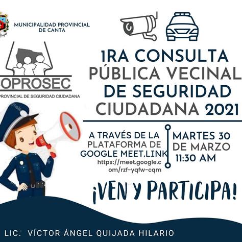 1era Consulta Publica Vecinal de Seguridad Nacional