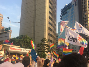 in reflection of pride parades