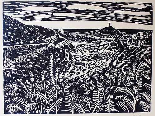 Rachel Richards - Kenidjack Valley. Original Lino Print