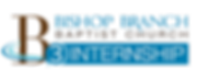 Intern Logo_edited.png
