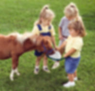 Pony%20Love_edited.jpg