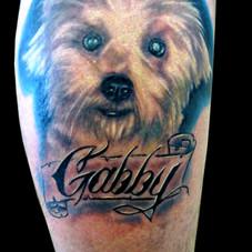 Gabby Dog Portrait.jpg