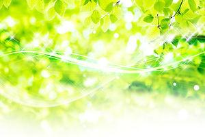 エコアクション_緑