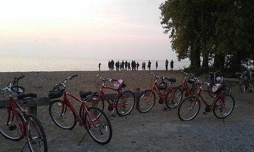 2 Bike Rentals