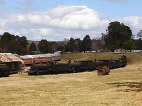 Dorrigo_Steam_Trains.jpg
