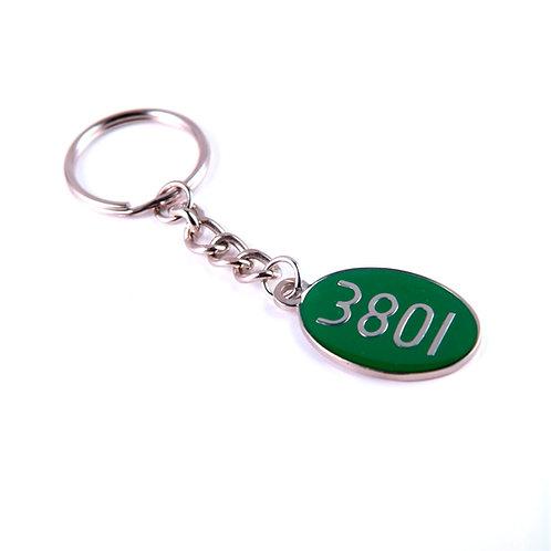 Keyring: Locomotive 3801 oval