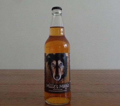 Temple Cider - Millie's Magic