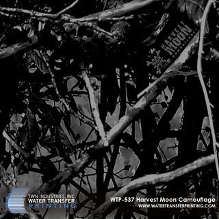 WTP-537 Harvest Moon Camouflage.jpg
