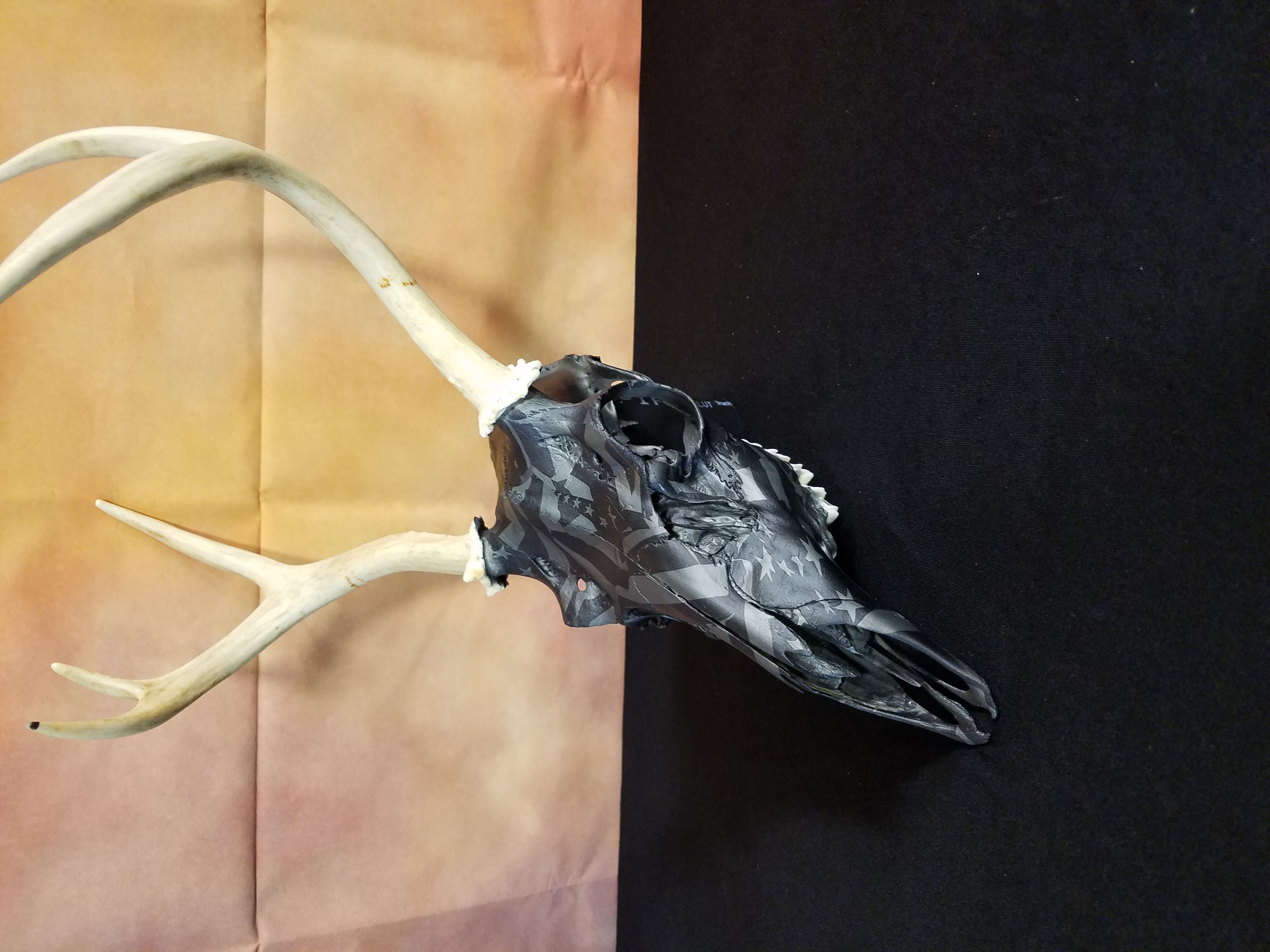 Midnight American Flag Deer Skull 2