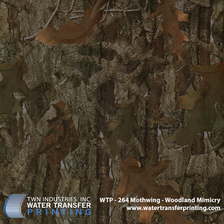 WTP-264 Mothwing-Woodland Mimicry.jpg