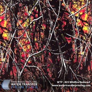 WTP-825 Wildfire Reduced.jpg