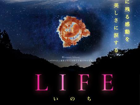 LIFE特別野外上映決定 in  FUKUOKA& LIFE Education リトリート