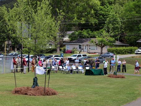 Parks and Recreation Celebrates Tree Planting at Etowah Park
