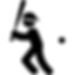 battingcage2.png