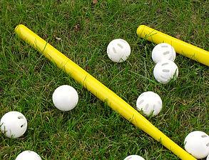 wiffle ball.jpg