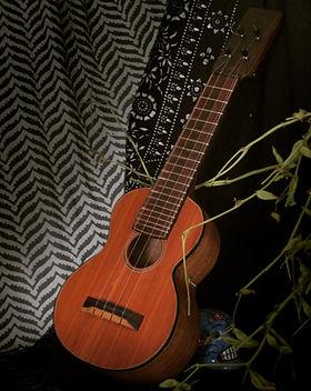 kingston ukulele