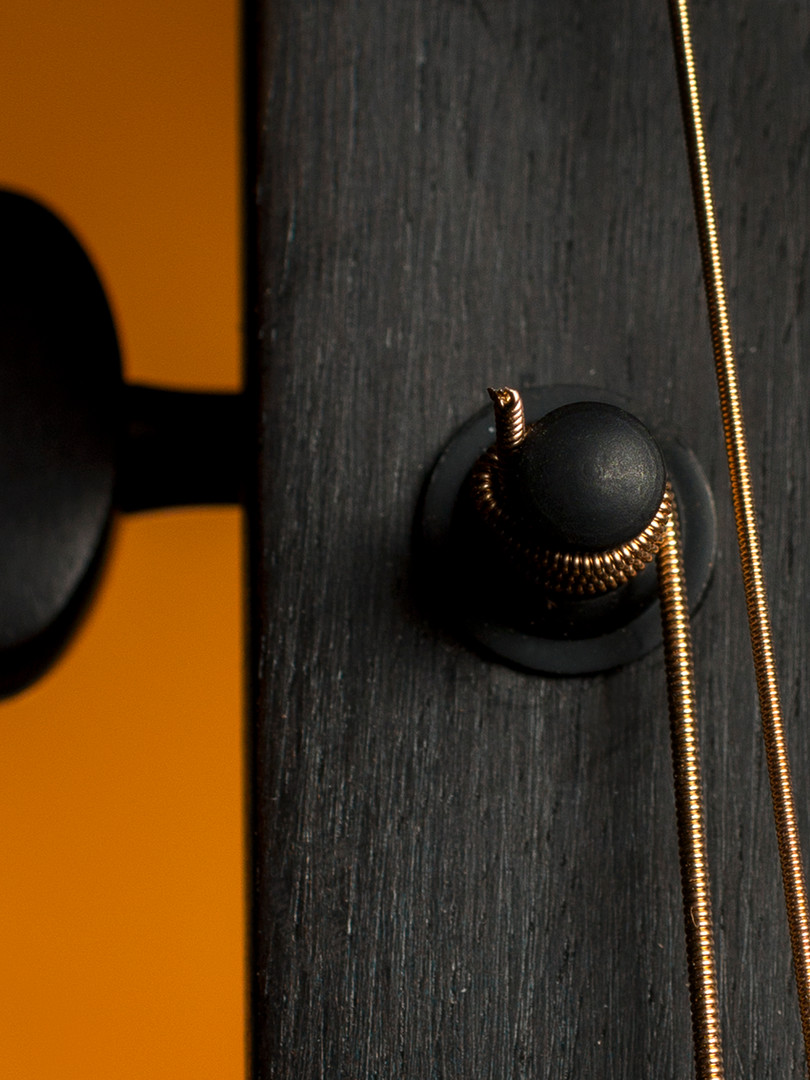 004_Rachels_Guitar_2014.jpg