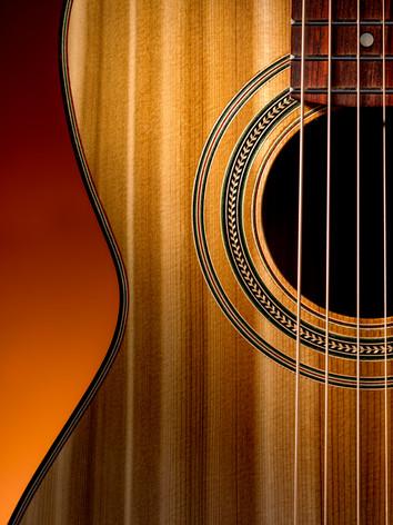 Cobble Hill Parlor guitar detail