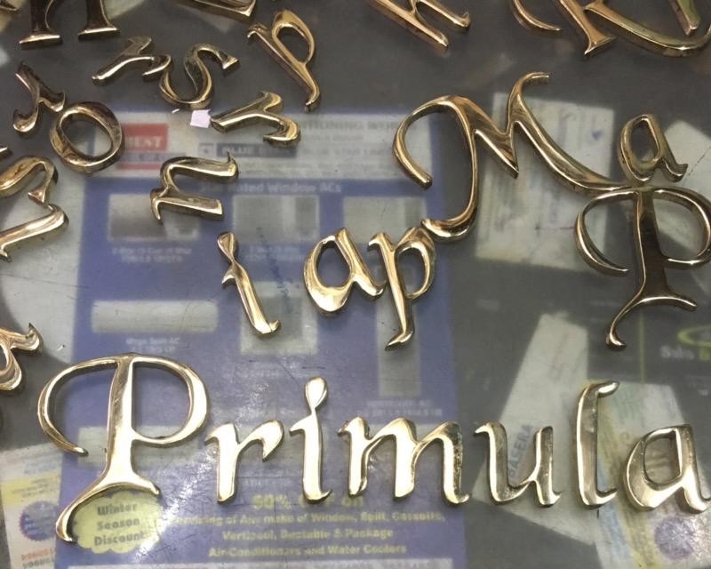 PRIMULA- THE ELF