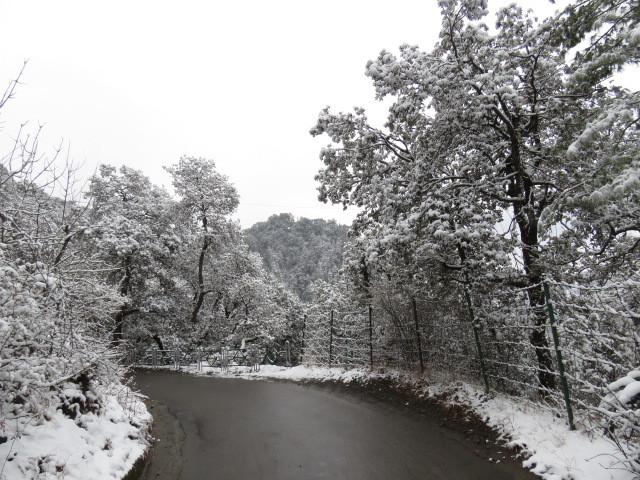 Fresh snow on the road to Groombridge