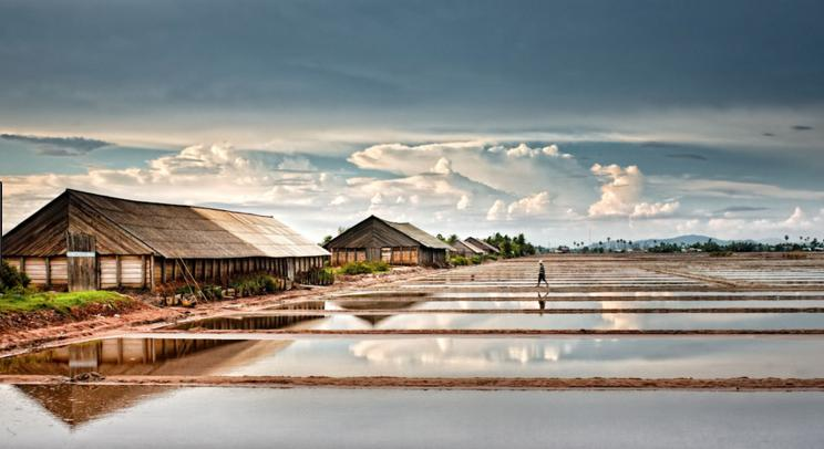 Salt fields in Kampot