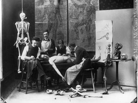Cadavers, Corpses, and Bodysnatchers: A Brief History of Medical Dissection