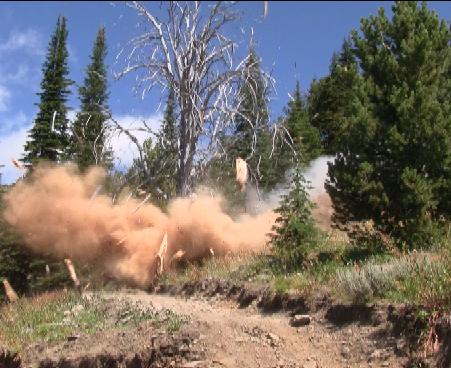 Tree explosion.bmp