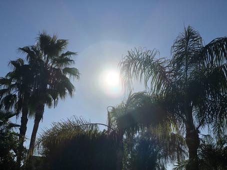 太陽から地球へ🌞→🌎