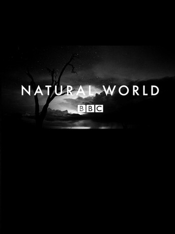 BBC Natural World: various episodes