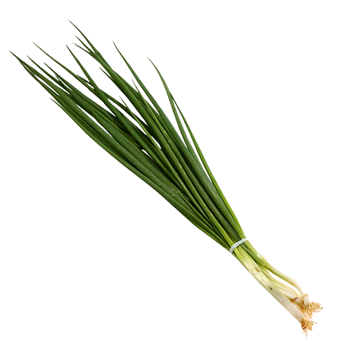 Cebolinha Orgânica
