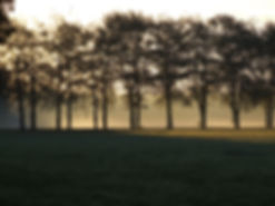 Wim Hoogveld fotografie