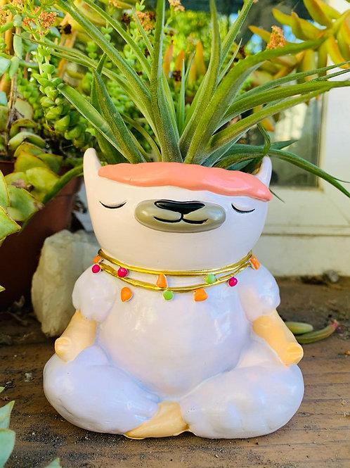 """Lama Meditating - 4"""""""