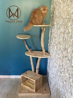 arbre a chat petit1.jpg