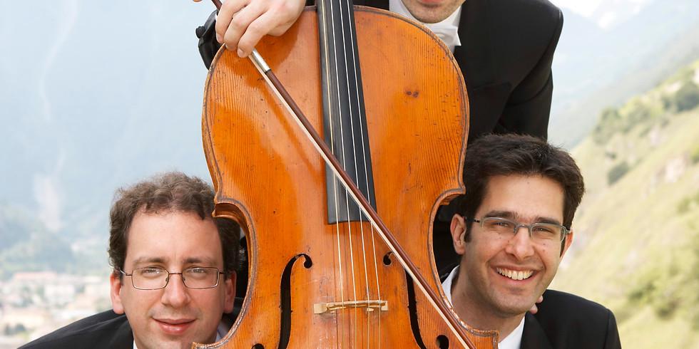 Trio Nota Bene - concert à la maison