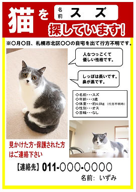 ペット捜索_page-0001 (1).jpg